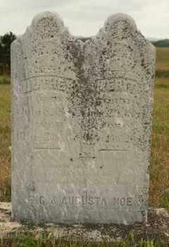 NOE, MERIT - Cedar County, Nebraska | MERIT NOE - Nebraska Gravestone Photos