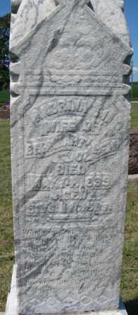 OLSEN, ANDRINA M. - Cedar County, Nebraska | ANDRINA M. OLSEN - Nebraska Gravestone Photos