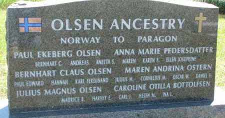 OLSEN ANCESTRY, FRONT OF MARKER - Cedar County, Nebraska | FRONT OF MARKER OLSEN ANCESTRY - Nebraska Gravestone Photos