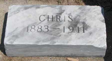 OLSEN, CHRIS - Cedar County, Nebraska | CHRIS OLSEN - Nebraska Gravestone Photos