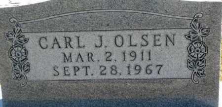 OLSEN, CARL J. - Cedar County, Nebraska | CARL J. OLSEN - Nebraska Gravestone Photos