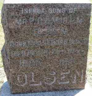 OLSEN, INFANT - Cedar County, Nebraska | INFANT OLSEN - Nebraska Gravestone Photos