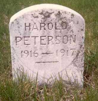 PETERSON, HAROLD - Cedar County, Nebraska | HAROLD PETERSON - Nebraska Gravestone Photos
