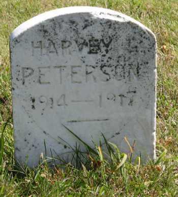 PETERSON, HARVEY - Cedar County, Nebraska | HARVEY PETERSON - Nebraska Gravestone Photos