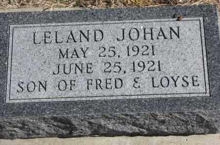PETERSON, LELAND JOHAN - Cedar County, Nebraska | LELAND JOHAN PETERSON - Nebraska Gravestone Photos