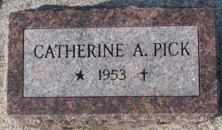PICK, CATHERINE A. - Cedar County, Nebraska | CATHERINE A. PICK - Nebraska Gravestone Photos