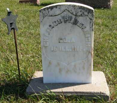 PLUMLEIGH, CHARLES - Cedar County, Nebraska | CHARLES PLUMLEIGH - Nebraska Gravestone Photos