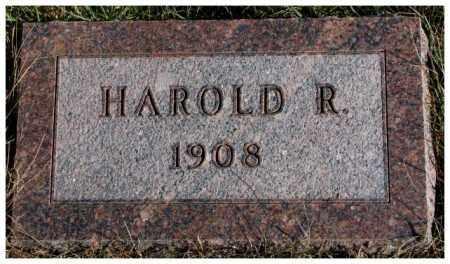 POELLET, HAROLD R. - Cedar County, Nebraska | HAROLD R. POELLET - Nebraska Gravestone Photos