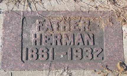 POTTS, HERMAN - Cedar County, Nebraska   HERMAN POTTS - Nebraska Gravestone Photos