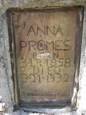 PROMES, ANNA (CLOSEUP) - Cedar County, Nebraska | ANNA (CLOSEUP) PROMES - Nebraska Gravestone Photos