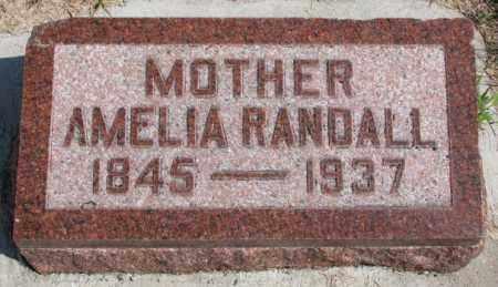 RANDALL, AMELIA - Cedar County, Nebraska | AMELIA RANDALL - Nebraska Gravestone Photos