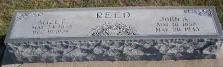 REED, ALICE E. - Cedar County, Nebraska | ALICE E. REED - Nebraska Gravestone Photos
