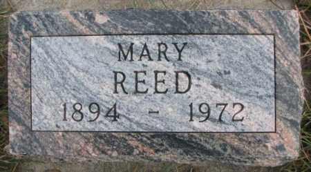 REED, MARY - Cedar County, Nebraska | MARY REED - Nebraska Gravestone Photos