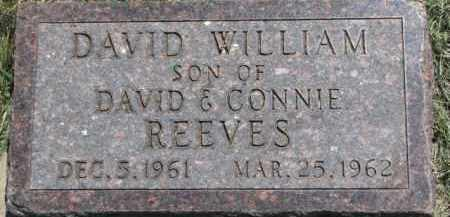 REEVES, DAVID WILLIAM - Cedar County, Nebraska | DAVID WILLIAM REEVES - Nebraska Gravestone Photos