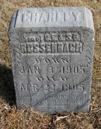 ROSSENBACH, CHARLEY - Cedar County, Nebraska   CHARLEY ROSSENBACH - Nebraska Gravestone Photos