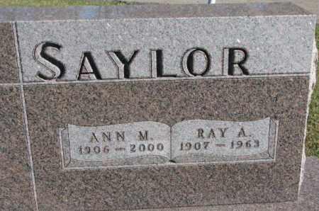SAYLOR, ANN M. - Cedar County, Nebraska | ANN M. SAYLOR - Nebraska Gravestone Photos
