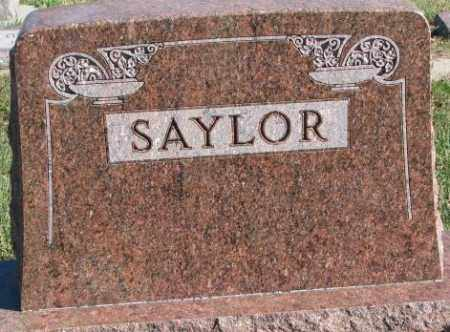 SAYLOR, PLOT - Cedar County, Nebraska | PLOT SAYLOR - Nebraska Gravestone Photos