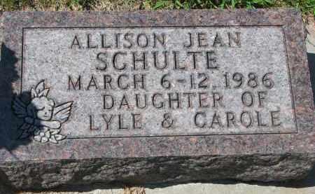SCHULTE, ALLISON JEAN - Cedar County, Nebraska | ALLISON JEAN SCHULTE - Nebraska Gravestone Photos