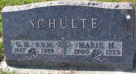 SCHULTE, G.H. - Cedar County, Nebraska | G.H. SCHULTE - Nebraska Gravestone Photos