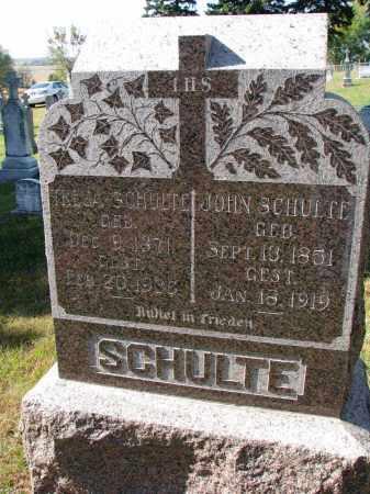 SCHULTE, TRESA - Cedar County, Nebraska | TRESA SCHULTE - Nebraska Gravestone Photos