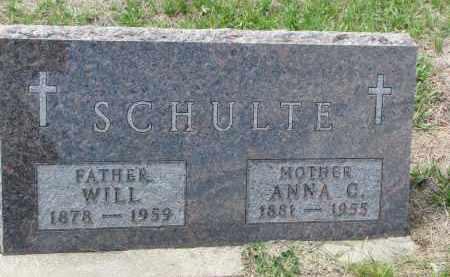 SCHULTE, WILL - Cedar County, Nebraska | WILL SCHULTE - Nebraska Gravestone Photos