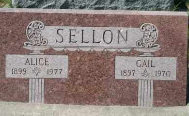 SELLON, ALICE - Cedar County, Nebraska | ALICE SELLON - Nebraska Gravestone Photos