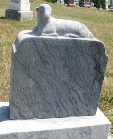 SELLON, INFANT - Cedar County, Nebraska   INFANT SELLON - Nebraska Gravestone Photos