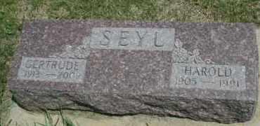 SEYL, GERTRUDE - Cedar County, Nebraska | GERTRUDE SEYL - Nebraska Gravestone Photos