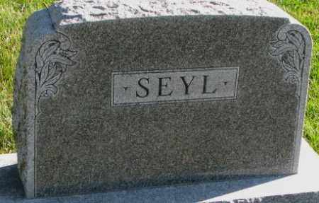 SEYL, PLOT - Cedar County, Nebraska | PLOT SEYL - Nebraska Gravestone Photos