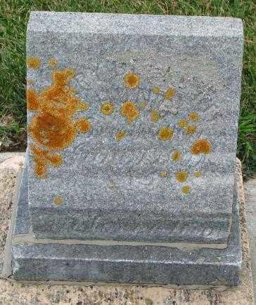 SHERWOOD ?, HARRY ? - Cedar County, Nebraska | HARRY ? SHERWOOD ? - Nebraska Gravestone Photos