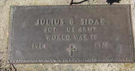 SIDAK, JULIUS B. - Cedar County, Nebraska | JULIUS B. SIDAK - Nebraska Gravestone Photos