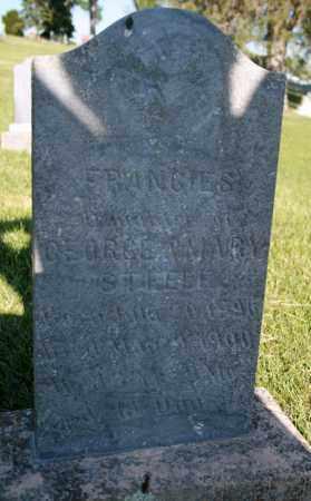 STEELE, FRANCIES - Cedar County, Nebraska   FRANCIES STEELE - Nebraska Gravestone Photos