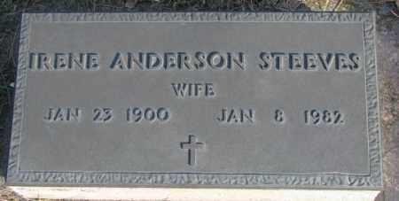 ANDERSON STEEVES, IRENE - Cedar County, Nebraska | IRENE ANDERSON STEEVES - Nebraska Gravestone Photos