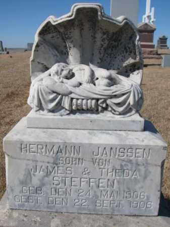 STEFFEN, HERMANN JANSSEN - Cedar County, Nebraska | HERMANN JANSSEN STEFFEN - Nebraska Gravestone Photos