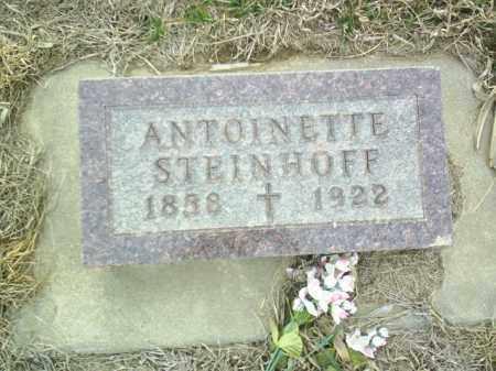 STEINHOFF, ANTOINETTE - Cedar County, Nebraska   ANTOINETTE STEINHOFF - Nebraska Gravestone Photos