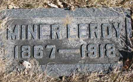 STETSON, MINER LEROY - Cedar County, Nebraska | MINER LEROY STETSON - Nebraska Gravestone Photos