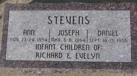 STEVENS, DANIEL - Cedar County, Nebraska | DANIEL STEVENS - Nebraska Gravestone Photos