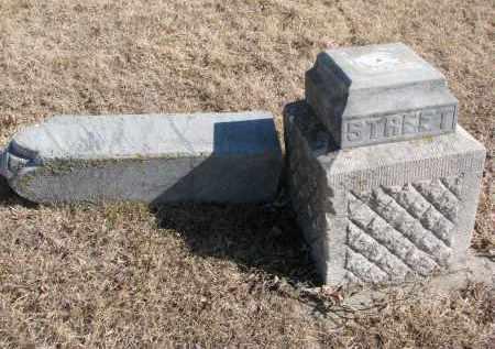 STREET, MARY DEETTA - Cedar County, Nebraska | MARY DEETTA STREET - Nebraska Gravestone Photos