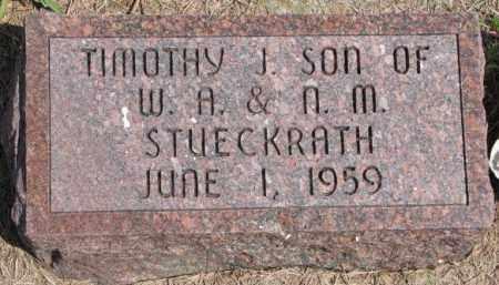 STUECKRATH, TIMOTHY J. - Cedar County, Nebraska | TIMOTHY J. STUECKRATH - Nebraska Gravestone Photos