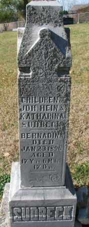 SUDBECK, BERNADINA - Cedar County, Nebraska | BERNADINA SUDBECK - Nebraska Gravestone Photos