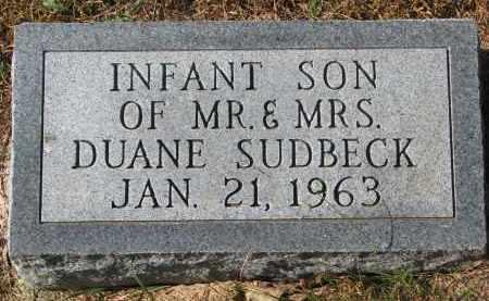 SUDBECK, INFANT SON - Cedar County, Nebraska | INFANT SON SUDBECK - Nebraska Gravestone Photos