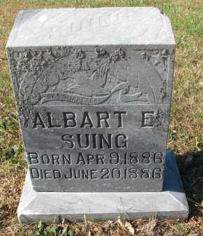 SUING, ALBART E. - Cedar County, Nebraska | ALBART E. SUING - Nebraska Gravestone Photos