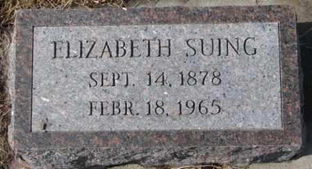 SUING, ELIZABETH - Cedar County, Nebraska   ELIZABETH SUING - Nebraska Gravestone Photos