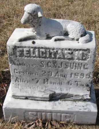 SUING, FELICITAS M. - Cedar County, Nebraska | FELICITAS M. SUING - Nebraska Gravestone Photos