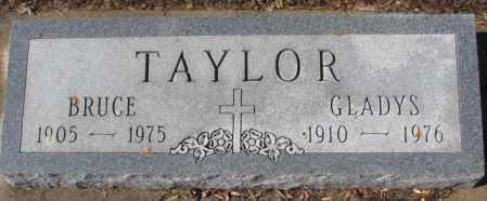 TAYLOR, BRUCE - Cedar County, Nebraska | BRUCE TAYLOR - Nebraska Gravestone Photos