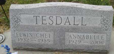 TESDALL, ANNABELLE - Cedar County, Nebraska | ANNABELLE TESDALL - Nebraska Gravestone Photos