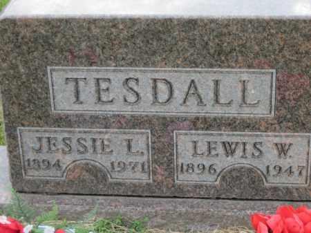 TESDALL, LEWIS W. - Cedar County, Nebraska | LEWIS W. TESDALL - Nebraska Gravestone Photos