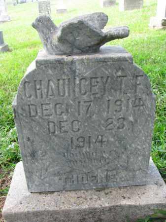THOENE, CHAUNCEY T.F. - Cedar County, Nebraska   CHAUNCEY T.F. THOENE - Nebraska Gravestone Photos