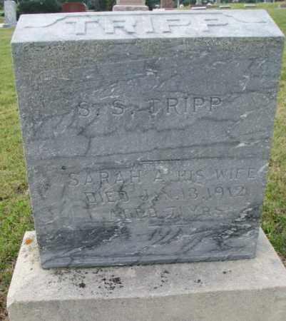 TRIPP, S.S. - Cedar County, Nebraska   S.S. TRIPP - Nebraska Gravestone Photos
