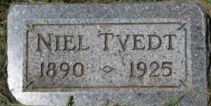 TVEDT, NIEL - Cedar County, Nebraska   NIEL TVEDT - Nebraska Gravestone Photos